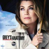 Grey's Anatomy 🇧🇷🇵🇹