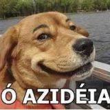 # Iludidos