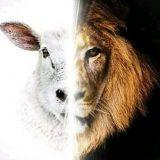 Cordeiro e Leão G.D.E❤️