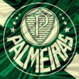 S.E. Palmeiras 💚⚽