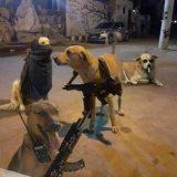 Tropa do Cachorro 🙅🏽♂️🐶