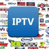 IPTV Sócio Revenda