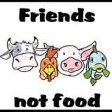 vegetarianos e veganos🌎❤️
