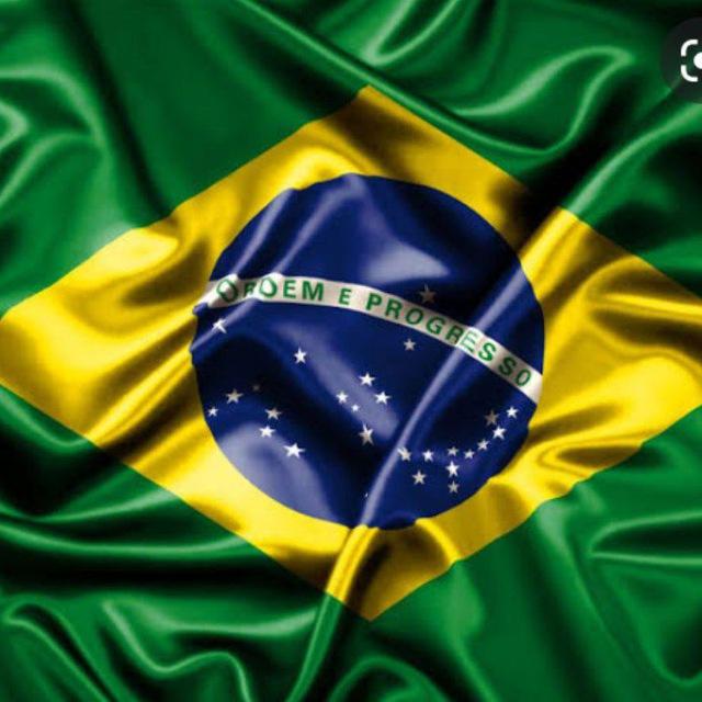 União Politica Brasileira